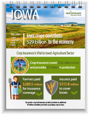 Connealy Insurance | Iowa Crop Insurance Statistics